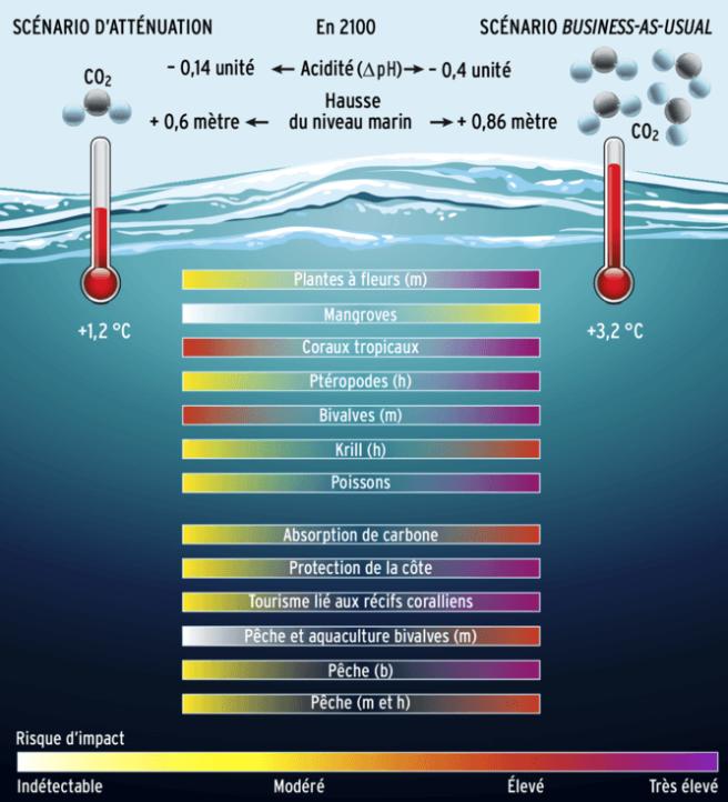 infographie co2 ocean et climat